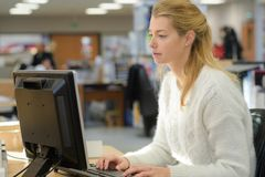 Trabalhador de escritório fêmea com computador imagem de stock royalty free