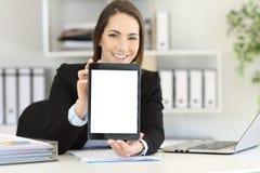 Trabalhador de escritório que mostra um modelo da tela da tabuleta foto de stock royalty free