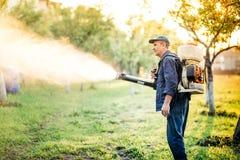 Trabalhador de exploração agrícola industrial que faz o controlo de pragas usando o inseticida foto de stock