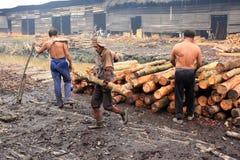Trabalhador do carvão vegetal de madeira dos manguezais Fotos de Stock Royalty Free