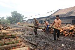 Trabalhador do carvão vegetal de madeira dos manguezais Fotografia de Stock