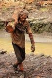 Trabalhador do carvão vegetal de madeira dos manguezais Imagens de Stock Royalty Free