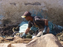 Trabalhador do curtume em C4marraquexe Marrocos Imagens de Stock Royalty Free