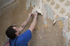 Trabalhador do homem que remove o papel de parede velho durante a renovação Fotografia de Stock