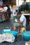 Trabalhador do produto em Roma, Itália Fotos de Stock