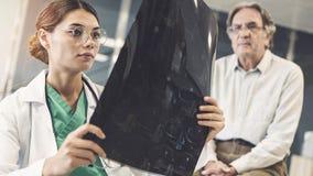 Trabalhador do setor da saúde que olha o raio X imagens de stock