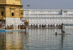 Trabalhador do sikh que coleta o lixo, templo dourado Fotos de Stock Royalty Free