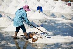 Trabalhador fêmea que trabalha no campo da bandeja de sal imagens de stock royalty free