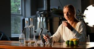 Trabalhador fêmea que usa o telefone celular na fábrica 4k da destilaria vídeos de arquivo