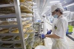 Trabalhador industrial 005 da cozinha Foto de Stock