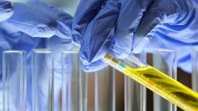 Trabalhador médico que põe o papel tornassol no tubo de ensaio com amostra de urina, equilíbrio do pH vídeos de arquivo