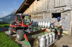 Trabalhador que derrama o leite nos tanques em uma casa da quinta fotografia de stock royalty free