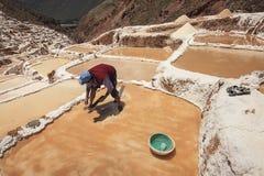 Trabalhador que trabalha nos pântanos de sal de Cusco no Peru Imagens de Stock Royalty Free