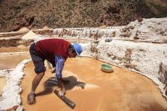Trabalhador que trabalha nos pântanos de sal de Cusco no Peru Foto de Stock