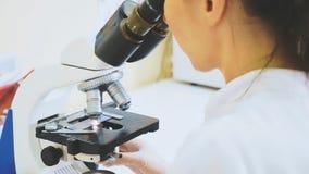Trabalhador veterinário que usa o microscópio para amostras de sangue de teste de animais fotos de stock