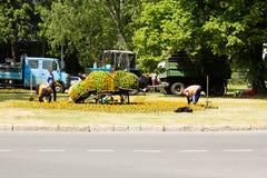 Trabalhadores da estrada Fotos de Stock Royalty Free
