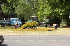Trabalhadores da estrada Imagens de Stock Royalty Free