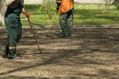 Trabalhadores de jardinagem do serviço que preparam a terra no parque com ferramentas de jardim Fundo Defocused imagens de stock