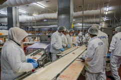 Trabalhadores de mulher muçulmanos que trabalham em uma planta de carne da galinha Fotos de Stock