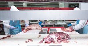 Trabalhadores do matadouro da carne do corte em uma fábrica da carne Foto de Stock