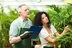 Trabalhadores que examinam plantas Fotos de Stock Royalty Free