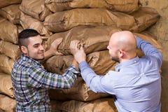 Trabalhadores que levam sacos do cimento Imagens de Stock Royalty Free
