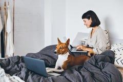 Trabalho da mulher e do cão da cama home Foto de Stock