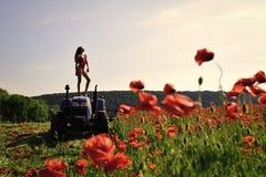 trabalho da mulher no campo da papoila no trator Foto de Stock Royalty Free