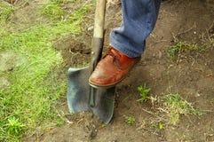 Trabalho em um jardim ou em um tesouro Search_3 Imagem de Stock Royalty Free