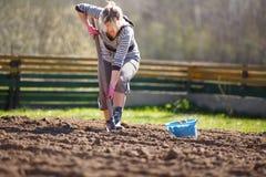 Trabalho no jardim Imagem de Stock Royalty Free