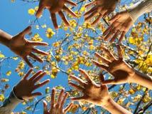 Trabalhos de equipa étnicos Fotografia de Stock Royalty Free