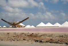 Trabalhos de sal Imagem de Stock