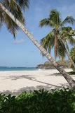 Trabaud beach, Martinique Royalty Free Stock Photo