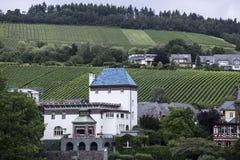 Traben-Trarbach op de Moezel door bossen en enorme wijngaarden wordt omringd die stock foto's