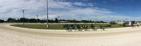 Trabrennen in Alexandra Park Raceway in Auckland Neuseeland stockfotos