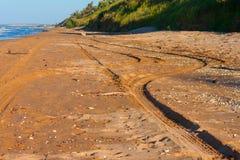 Tracce dall'automobile sulla sabbia Fotografia Stock