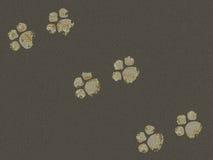 Tracce dell'animale sulla pavimentazione Immagini Stock