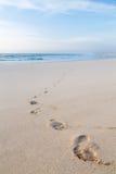 Tracce dell'essere umano sulla sabbia Fotografia Stock Libera da Diritti
