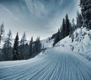 Tracce della neve Fotografie Stock Libere da Diritti