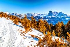 Tracce della neve sulle alpi delle dolomia Fotografia Stock Libera da Diritti