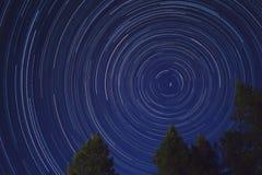Tracce della stella con gli alberi Fotografia Stock Libera da Diritti