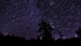 Tracce della stella nel cielo notturno video d archivio