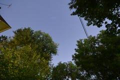 Tracce della stella notte 30 minuti Fotografia Stock Libera da Diritti