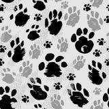 Tracce di animali delle dimensioni differenti Immagini Stock Libere da Diritti