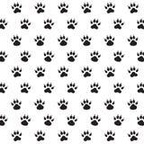 Tracce di cane. Fotografia Stock