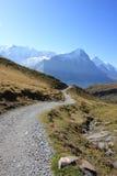 Tracce di escursione alle alpi dello svizzero di Jungfrau Immagini Stock Libere da Diritti