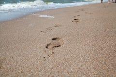 Tracce di piedi nudi su sabbia di mare bagnata Fotografia Stock