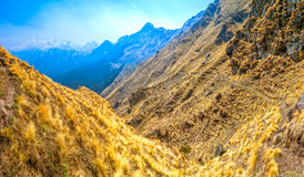 Tracce di trekking in Himalaya Fotografie Stock