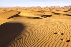 Tracce nelle sabbie del Marocco Fotografia Stock Libera da Diritti