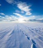 Tracce su una neve Immagine Stock